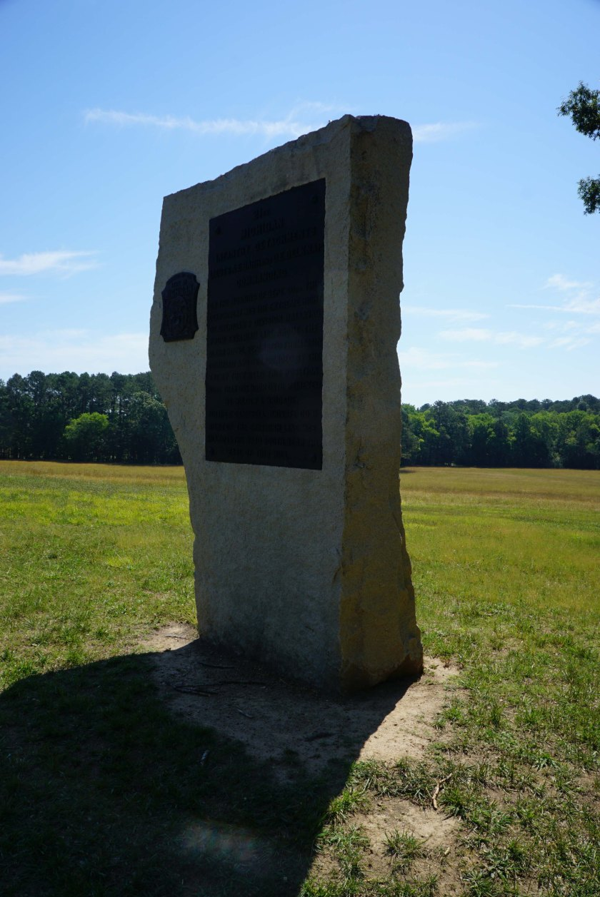 Detachment of 21 Michigan Infantry